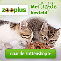 200x200_zooplus_nl_katten