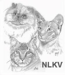 logo_nlkv